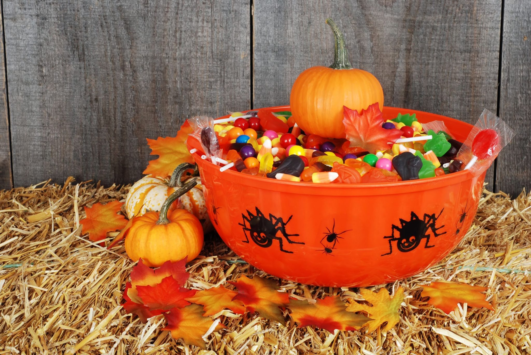 Parents and kids can stay healthy this Halloween with these five easy tips.